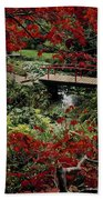 Japanese Garden, Through Acer In Beach Towel