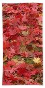 Japanese Red Maple Leaves Beach Towel