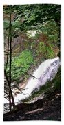 Jewell Of The Forest Beach Towel