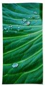 Jewels Of Water Beach Towel
