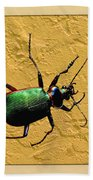 Jeweltone Beetle Beach Towel