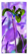 Jungle Iris Beach Towel