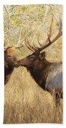 Junior Meets Bull Elk Beach Towel by Robert Frederick