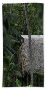 Kepaniwai Beach Towel