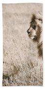 King Of Cats In Sepia Beach Towel