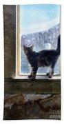 Kitten On Windowsill Of Abandoned House Beach Towel