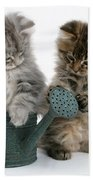 Kittens And Watering Can Beach Towel