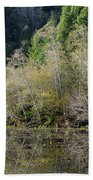 Klamath Pond Beach Towel