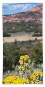 Kolob Terrace Red Buttes Beach Sheet
