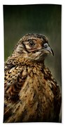 Lady Pheasant Beach Towel