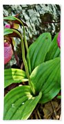 Lady Slipper I Beach Towel