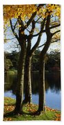 Lake And Trees, Mount Stewart, Co Down Beach Towel