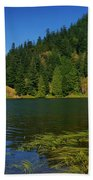Lake Errock Beach Towel