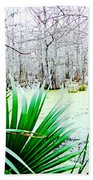 Lake Martin Swamp View Beach Towel