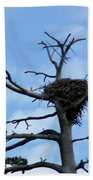 Lake Tahoe Eagle Nest Beach Towel