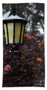 Lamp And Roses Beach Towel