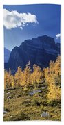 Larch Trees From The Saddleback Trail Beach Towel