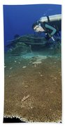 Large Staghorn Coral And Scuba Diver Beach Towel