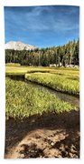 Lassen Meadows Beach Towel