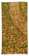 Lawn Covered With Fallen Leaves Beach Towel