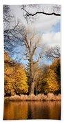Lazienki Park Autumn Scenery Beach Towel