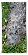 Lazy Gator II Beach Towel