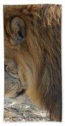 Le Lion Beach Towel