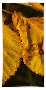 Leaf 3 Beach Towel