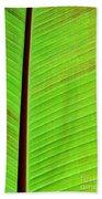 Leaf Abstract Beach Towel