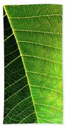 Leaf Texture Beach Towel by Carlos Caetano