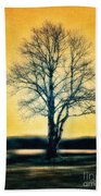 Leafless Tree Beach Towel