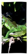Leapin Lizards Beach Towel