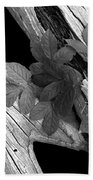 Leaves And Driftwood Bw Beach Towel