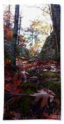 Leaves In The Forest Beach Towel