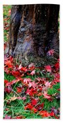 Leaves On The Ground Beach Towel