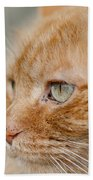 Leo The Kitty Beast Beach Towel