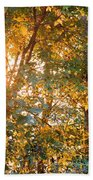 Let The Earth Arise Beach Towel