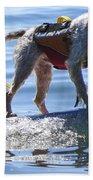 Let's Surf Dude Beach Towel