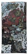 Lichen Abstract II Beach Towel