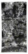Lichen Like Beach Towel