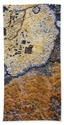 Lichen Pattern Series - 19 Beach Towel