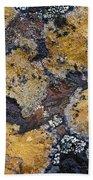 Lichen Pattern Series - 10 Beach Towel