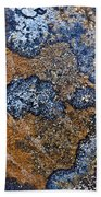 Lichen Pattern Series - 35 Beach Towel