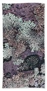 Lichen Pattern Series - 57 Beach Towel