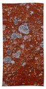 Lichen Pattern Series - 9 Beach Towel