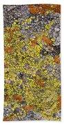 Lichens Beach Towel