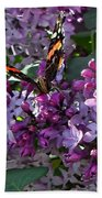 Lilac Butterfly Beach Towel