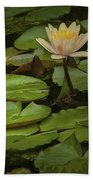 Lily Pads And Blossoms. No204 Beach Towel