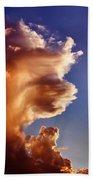 Lion King Cloud Beach Towel