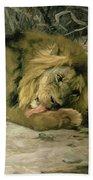 Lion Reclining In A Landscape Beach Towel
